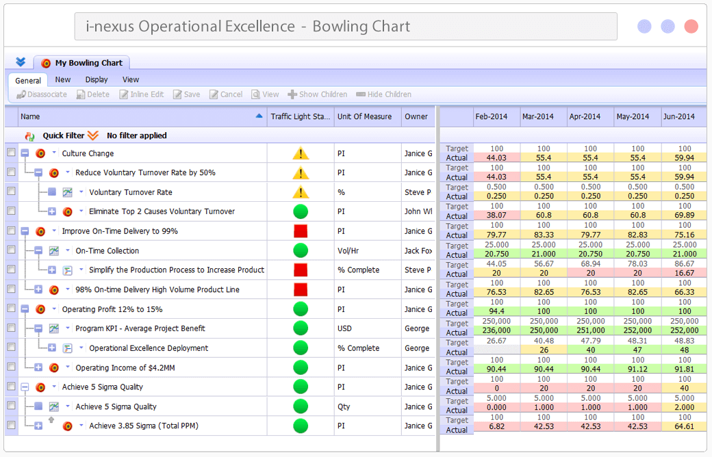 Operational Excellence Software- Bowling Chart