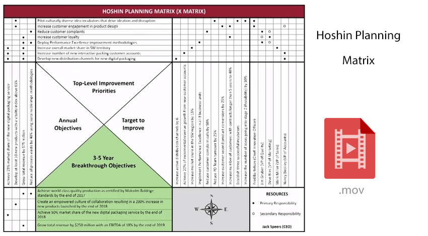 Hoshin planning matrix