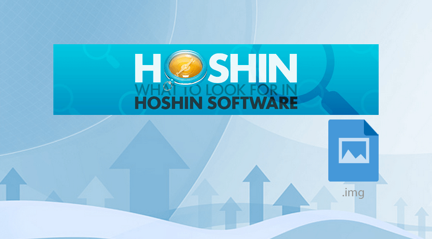 Renting Hoshin planning software