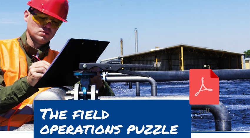 The field operations puzzle - Utilities Case study
